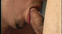 Two hot dudes get rid of their clothes and blow each other's dicks
