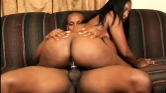 Curvaceous ebony hottie Camrie Foxxx knows her way around a black cock